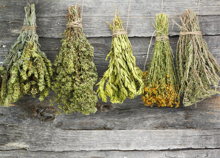 Variety of dried herbs on an old wooden background