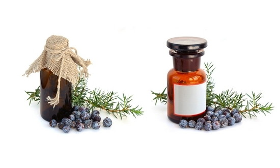 Juniper branch and berries with pharmaceutical bottles.