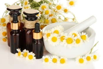 Essential oil and chamomile flowers in mortar close up
