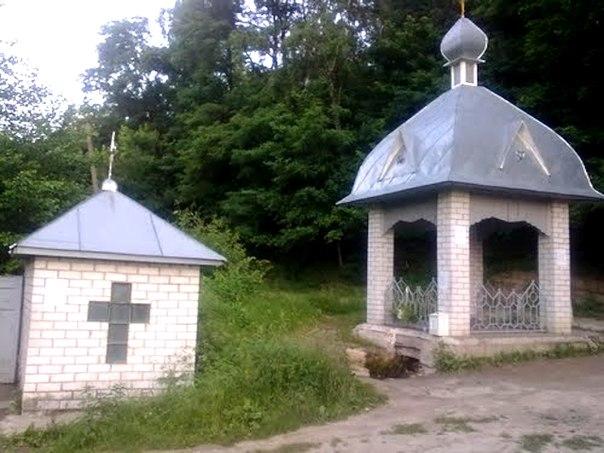 Источник в Полонках (Фото с сайта vk.com)