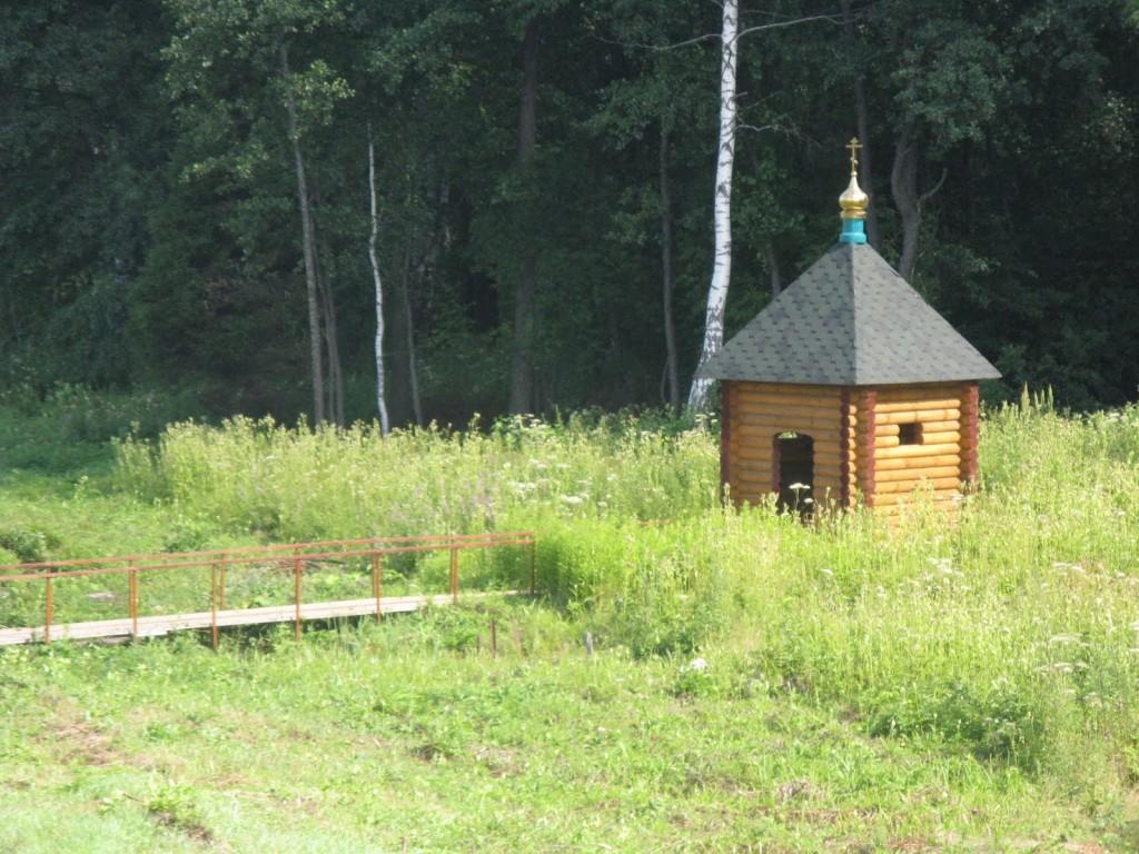 Святой источник в посёлке Петровское (Фото с сайта rostland.blogspot.ru)