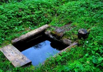 источник деревни Каменцы