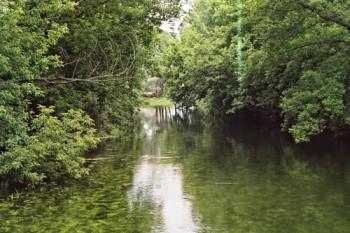Река Тихая Сосна Фото с сайта foto-planeta.com
