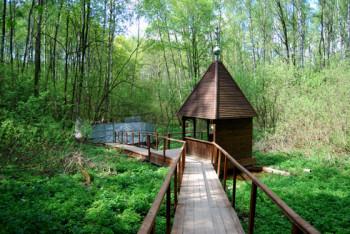 Источник пророка Божия Илии в деревне Орехово Фото с сайта papyrus-net.livejournal.com