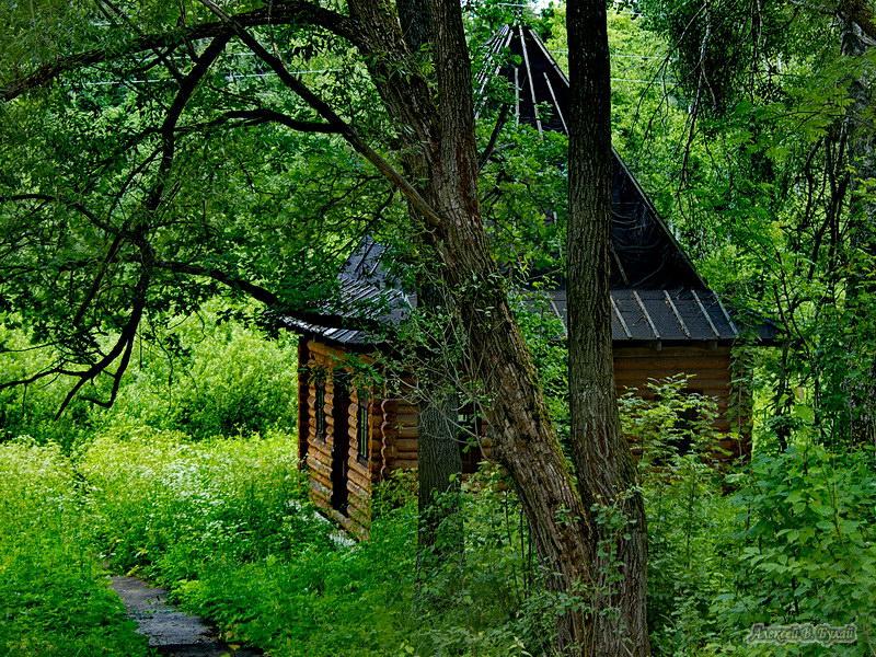 Святой источник во имя Святой Троицы в деревне Матвейково Фото с сайта altertravel.ru