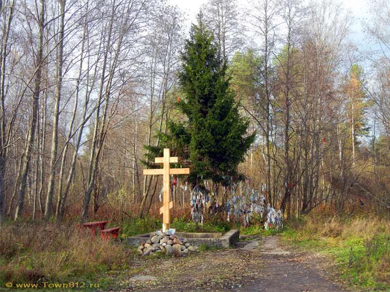 Вожани. Источник трёх икон Пресвятой Богородицы Фото с сайта town812.ru