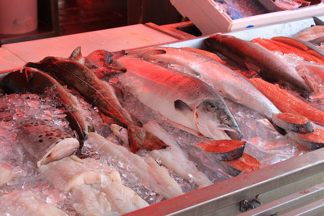 fish-650070_640