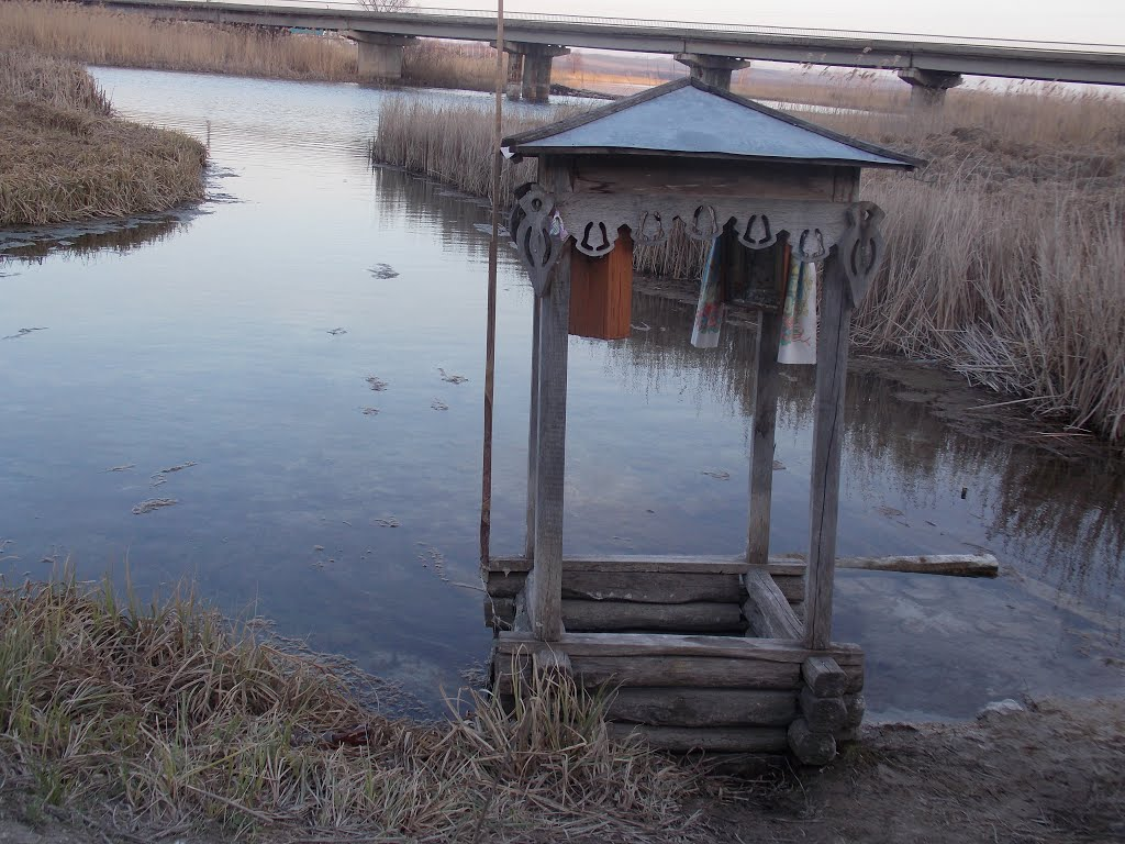 Источник Живоначальной Троицы. Верхний Ольшан Фото с сайта panoramio.com