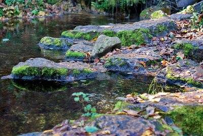 Минеральный ручей на Кленовой горе Фото с сайта vk.com