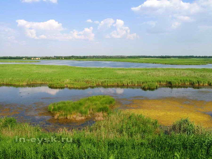 Ханское (Татарское) озеро Фото с сайта in-eysk.ru