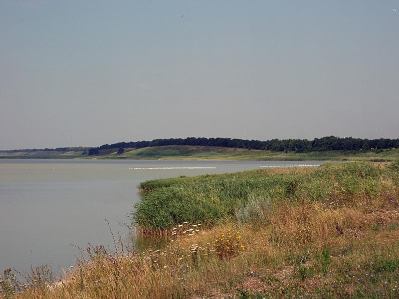 Ханское (Татарское) озеро Фото с сайта ooptkk.ru
