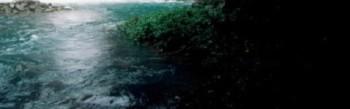 вода источника